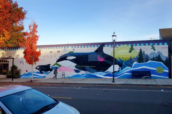 Nathaniel Art - Edmonds, WA - Orcas
